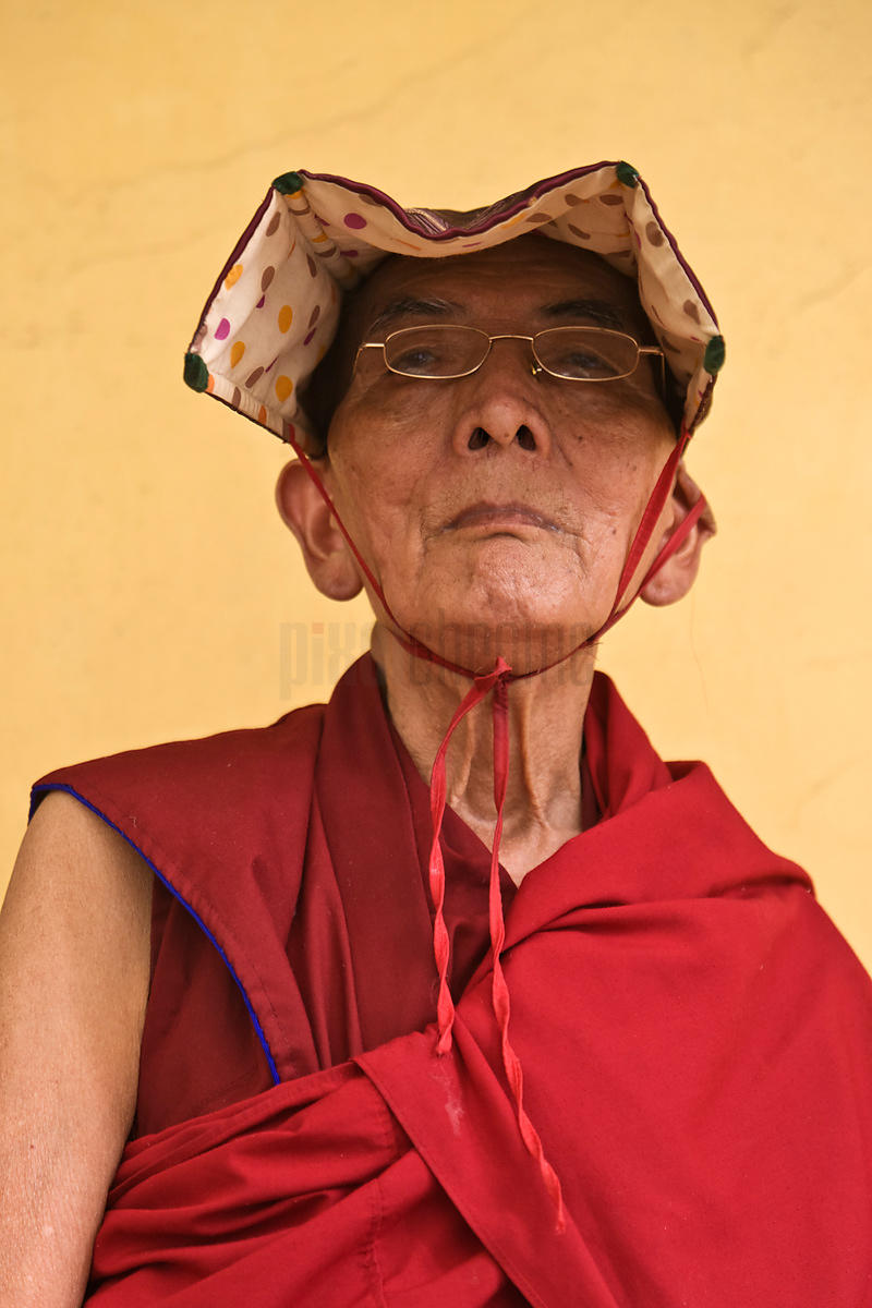 Elder Buddhist Monk at Namgyal Temple