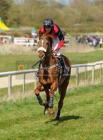 9YO and over Conditions - The Quorn at Garthorpe