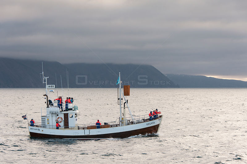 Whale watching boat with whale watchers, Skjalfandi Bay, northern Iceland, June
