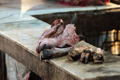 A Goat Head And Feet Sit On Bench At Market In Shyambazar Kolkata