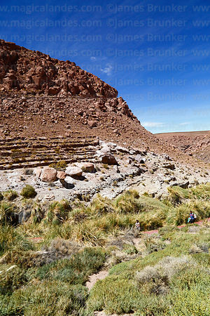 Pre-Inca terraces at Puritama thermal springs, Region II, Chile