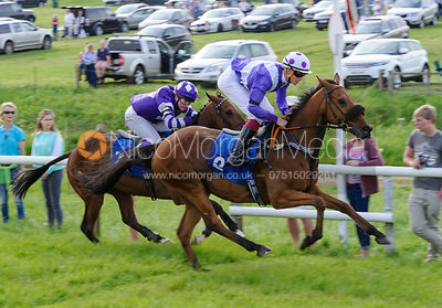 The Meynell and South Staffs Pony Race photos
