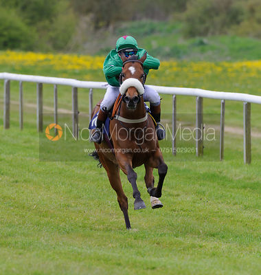 Pony Racing photos