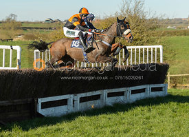 SHAMAT (Richard Collinson) - Race 7 2m4f Maiden - The Belvoir Point-to-point 2017