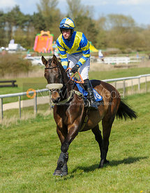 Hugh Nugent (THEODORE LAMB) - 9YO and over Conditions - The Quorn at Garthorpe