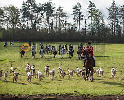 Grove & Rufford Hunt photos