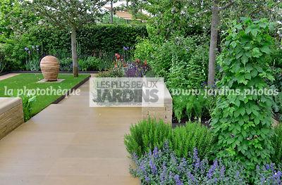 La phototh que les plus beaux jardins houblon lupulin for Jardin urbain contemporain