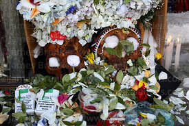 Skull with offerings of coca leaves ( Erythroxylum coca ) and cigarettes, Ñatitas festival, La Paz, Bolivia