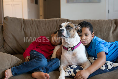 Two Boys Lying on Couch with Dog