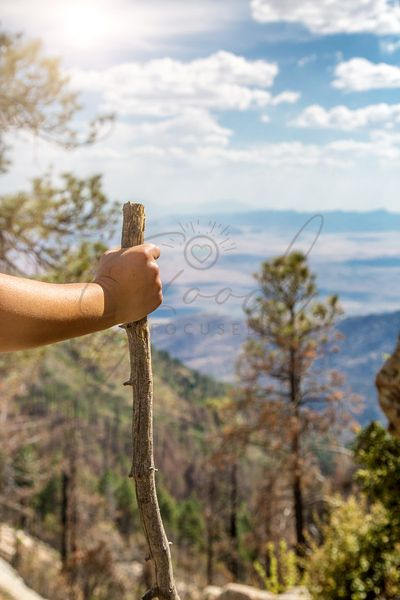 Hand Holding Walking Stick While Hiking