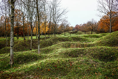 France. Verdun, november 2012.The battle of Verdun is a place of memory of the Great War from 1914 to 1918. This area remains marked by the battle, the holes of the shells and the trenches are still visible. It is still common to find shells still intact one hundred years after the battle..© Jean-Patrick Di Silvestro
