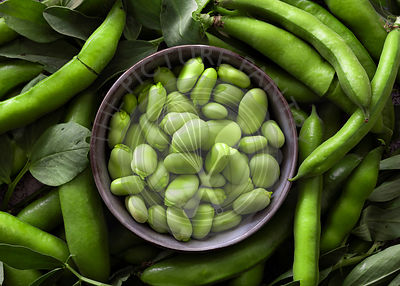 Fava bean pods around a bowl of shelled beans.