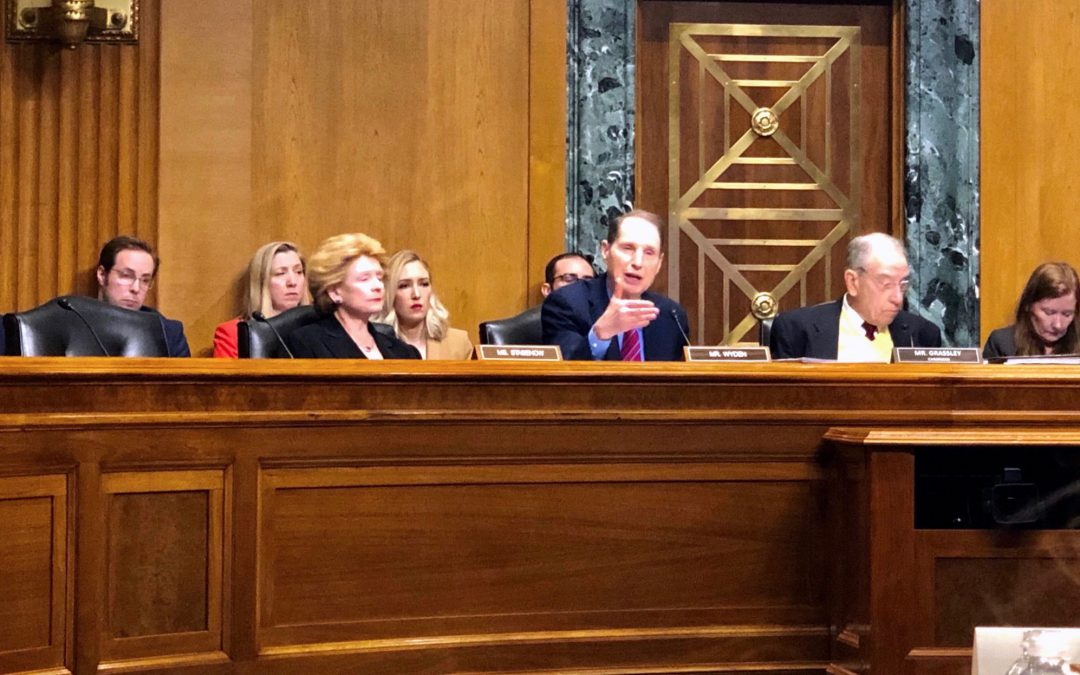 PANELISTS DESCRIBE PERSISTENT NURSING HOME ABUSE TO SENATORS