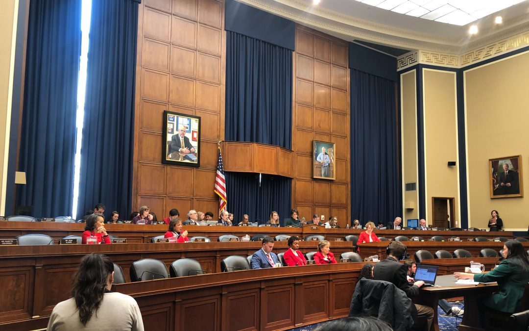 Subcommittee evaluates bill to protect women's access to abortion