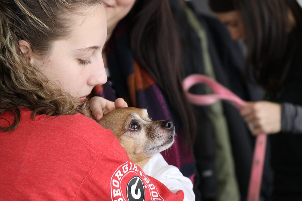 Tourist cuddling a dog