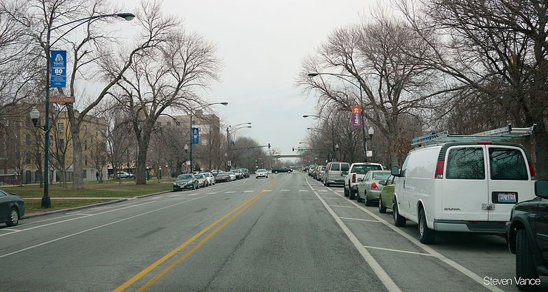 Little Village, Lincoln Park reflect segregated diversity