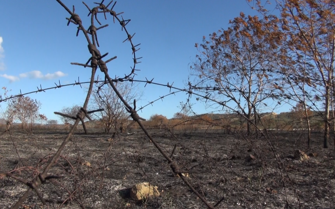 Amid Flames and Exploding Land Mines, Cuba and the US find Common Ground