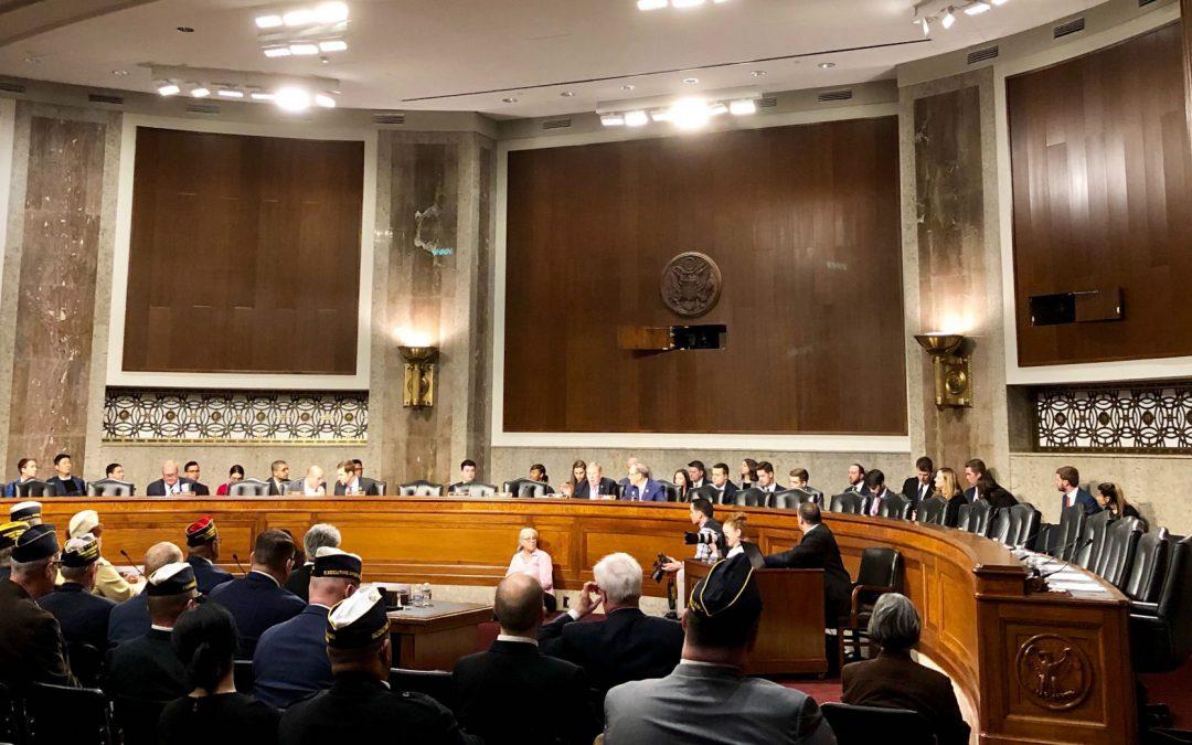 Veteran Organizations Speak at House, Senate Committee About VA Needs