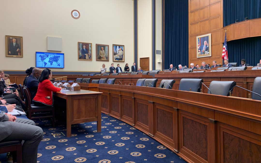 Big tech companies need to be liable for illicit activity on their platforms, experts tell House committee