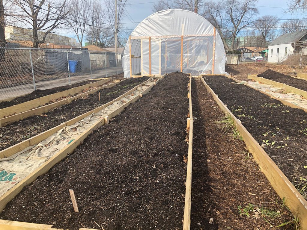Star Farm Chicago Makes Urban Agriculture Accessible Inclusive And Healing Medill Reports Chicago