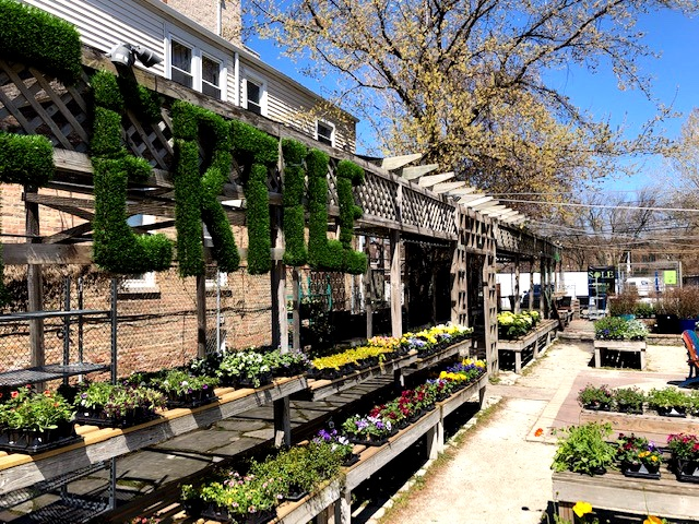 Fertile Garden Center