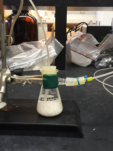 A reactor flask in Jess Adkins' lab shows how a reactor may work to neutralize CO2 emissions from shipping.