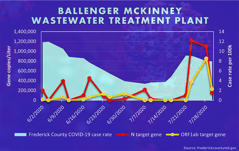 A graph showing Colwell's COVID-19 data from the Ballenger-McKinney wastewater treatment plant and Frederick County, Maryland's documented coronavirus cases