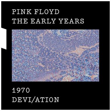 Cd Pink Floyd 1970 Deviation