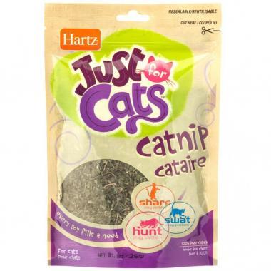 Atrayente P/Gatos C/Catnip Hartz Mod. Zz05231