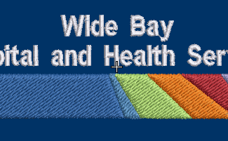 wide bay hospital and health services logo