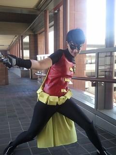 Image #3pmzzmd3 of Robin