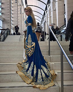 Princess Zelda Legend Of Zelda Breath Of The Wild Cosplay