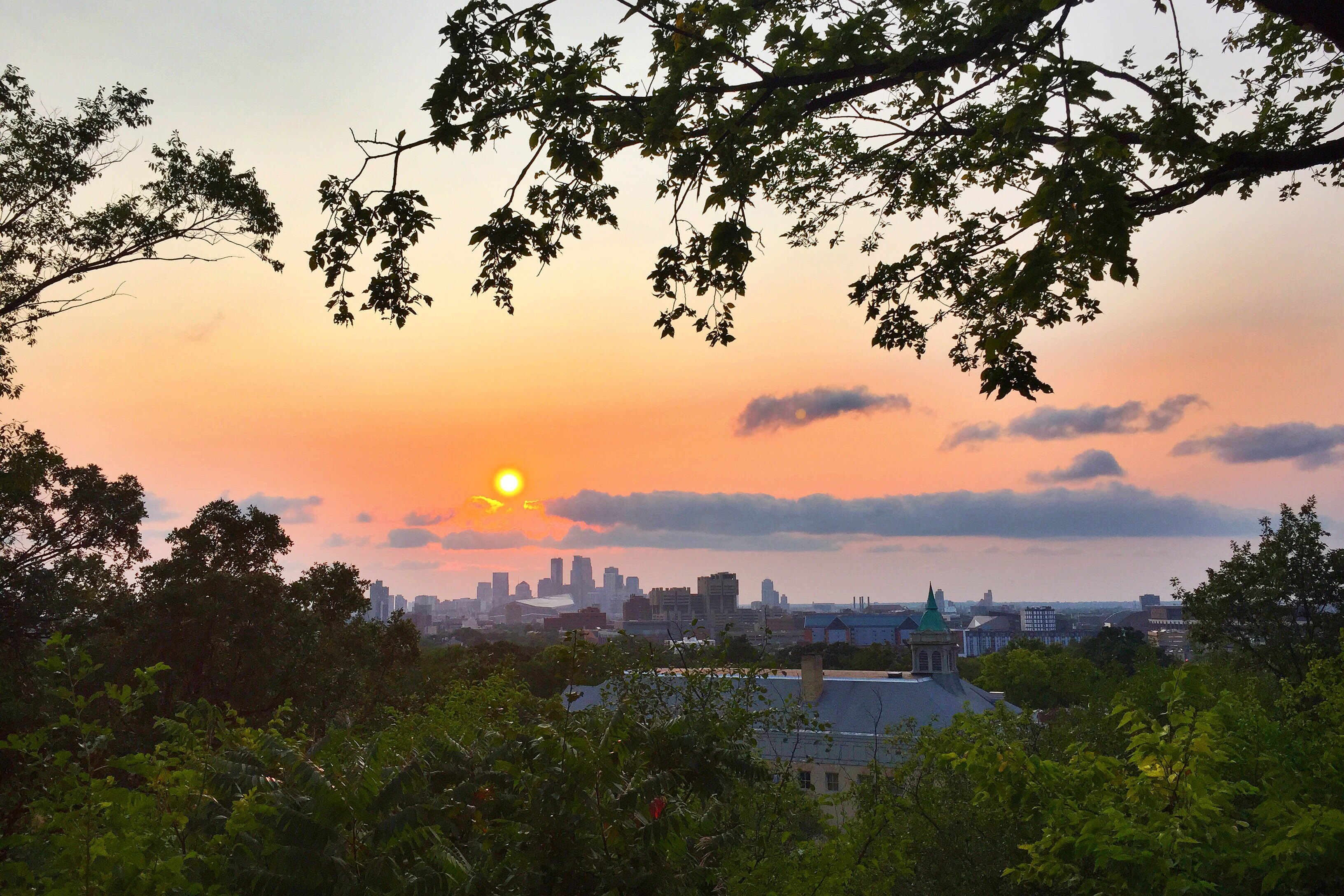 View from Prospect Park