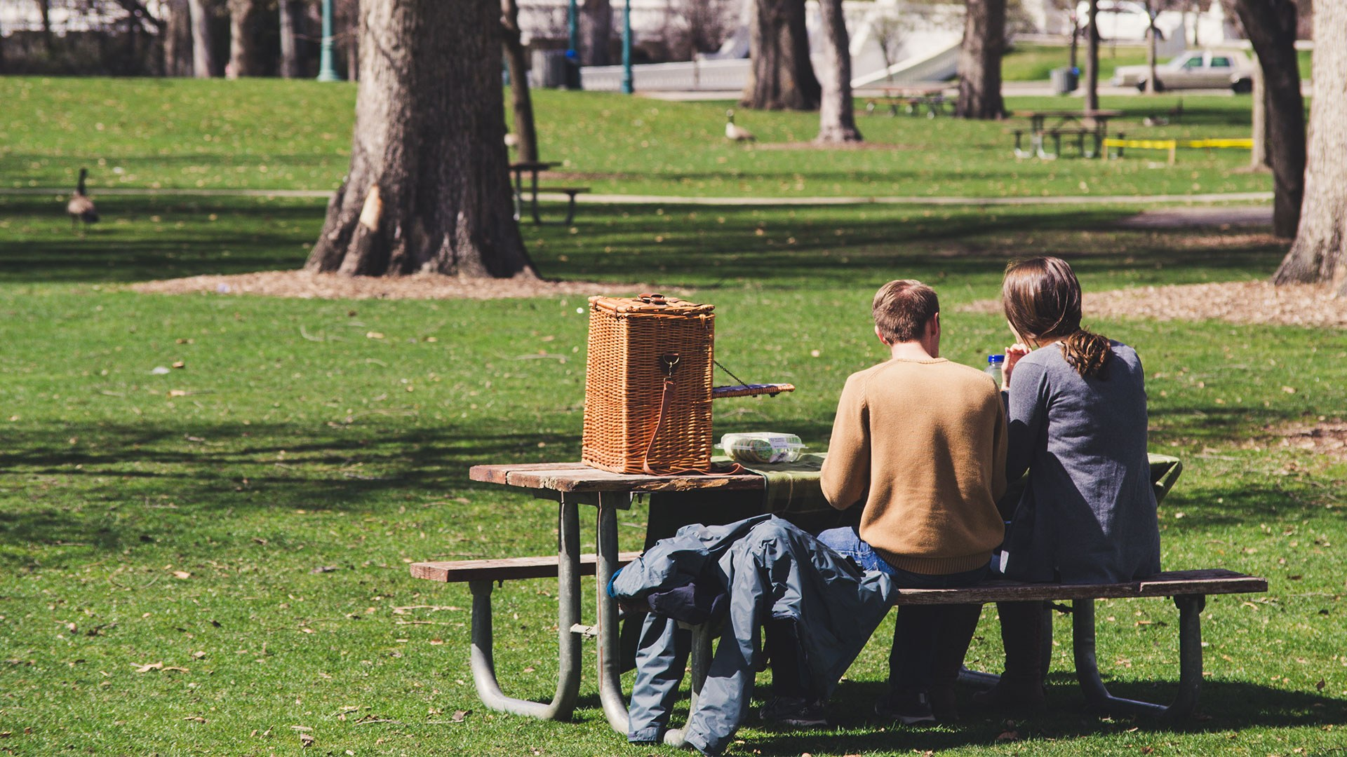 couple at park with picnic
