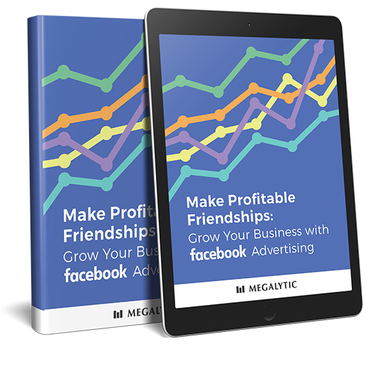 Make Profitable Friendships: Grow Your Business With Facebook Advertising