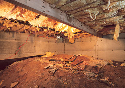 How To Inspect The Attic Insulation Ventilation And