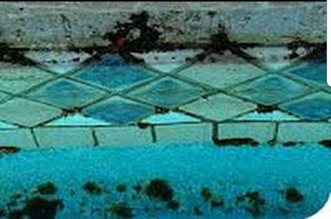 How To Inspect Pools And Spas Course Page 118 Internachi Inspection Forum