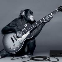 MonkeyC