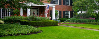Website for D's Lawn & Landscapes