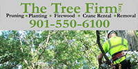 Website for The Tree Firm, Inc.