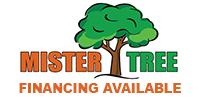 Website for Mister Tree