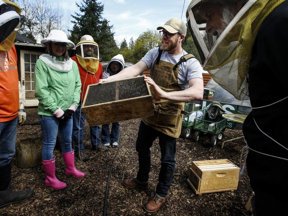Mentoring program a pollinator for small businesses