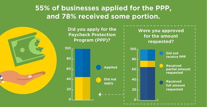 Infographic: The Impact of COVID-19 on Established Businesses - June 2020