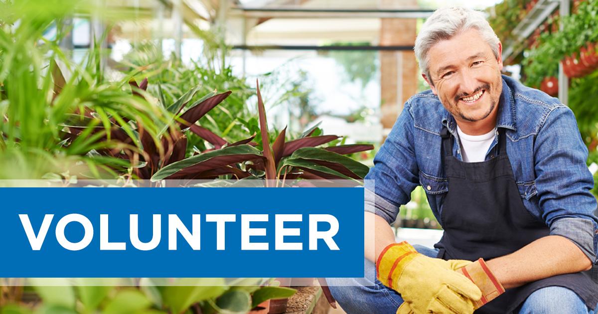 Volunteer with SCORE Little Rock