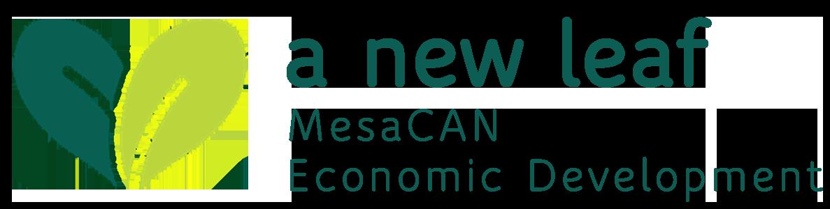 MesaCAN logo