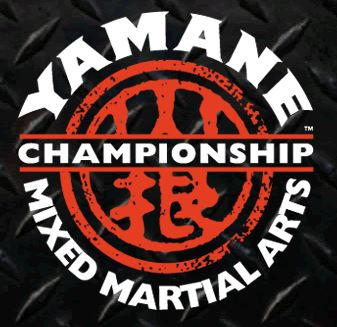 Yamane's Mixed Martial Arts Success Story of the Year