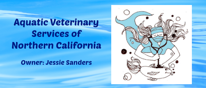 Aquatic Veterinary Services: Building a Specialty Around Two Businesses