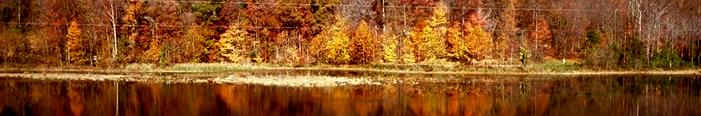 Brainerd Lakes SCORE