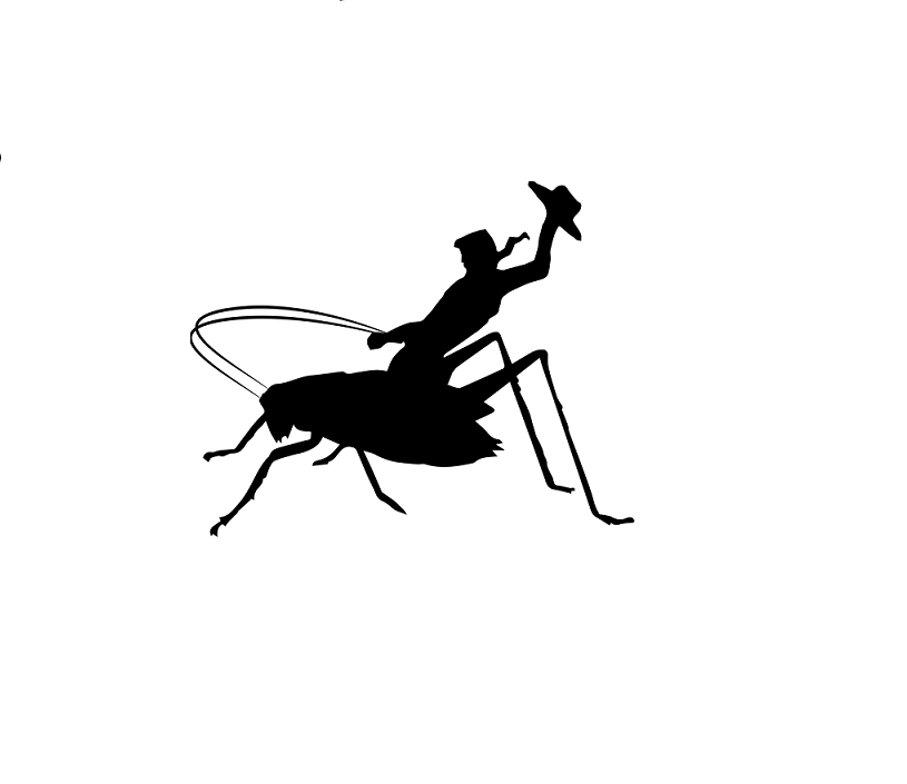 Cowboy Cricket Farms