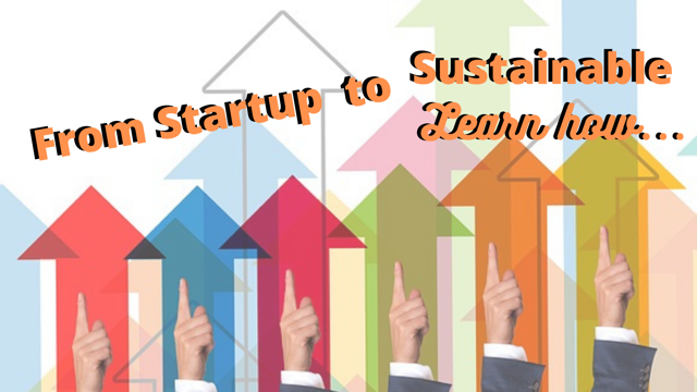 Part 1 From Start Up to Sustainability:  How to position for a 5 year Outlook